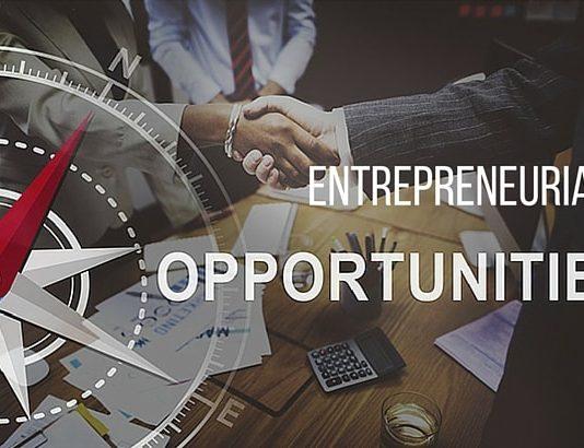 Entrepreneurial Opportunities course